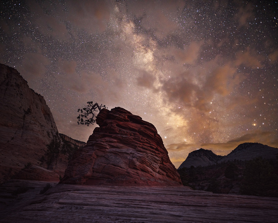 The Bonsai and the Milky Way - Zion National Park